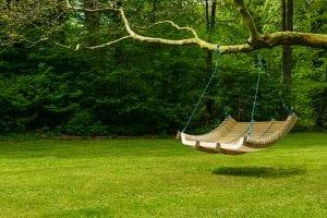 relaxing scene